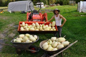 Farmstay Programm Kanada Erntearbeit