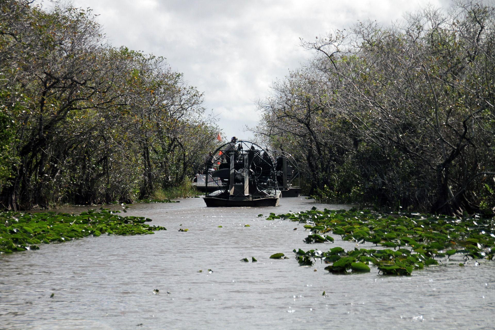 Top 5 Ausflugsziele in der Nähe von Miami Everglades