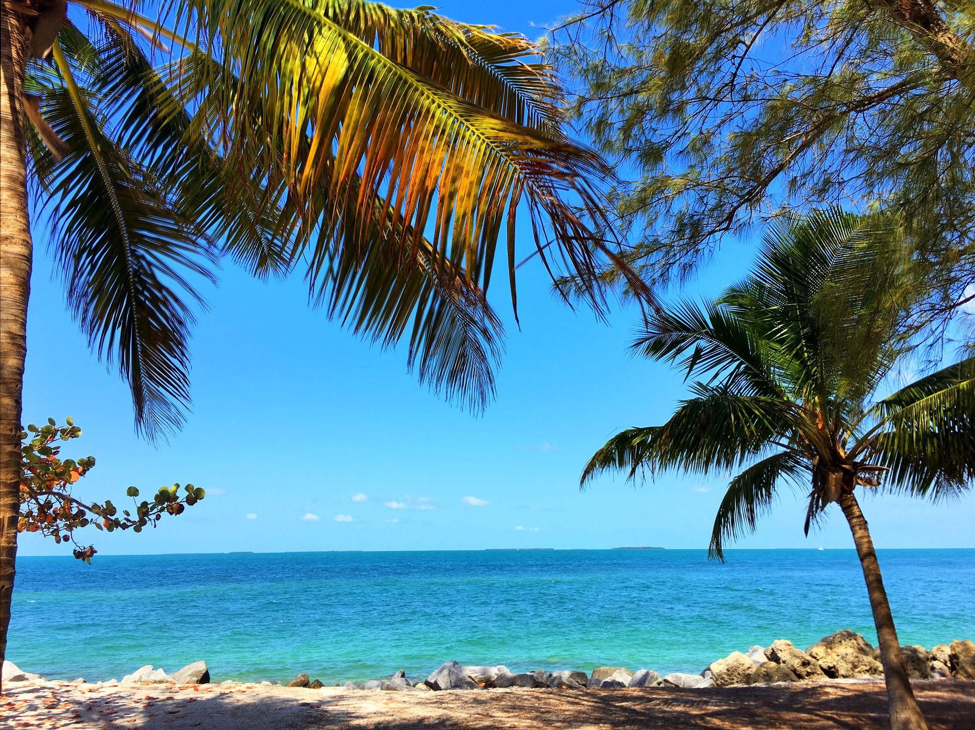 Top 5 Ausflugsziele in der Nähe von Miami Key West