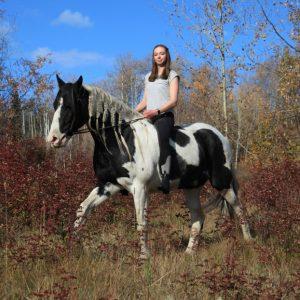 Erfahrungsbericht Farmstay Kanada Alissa - Unterwegs auf dem Pferd