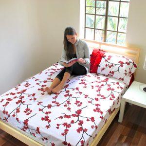 Einzelzimmer Geteilte Studentenwohnung Praktikum Australien